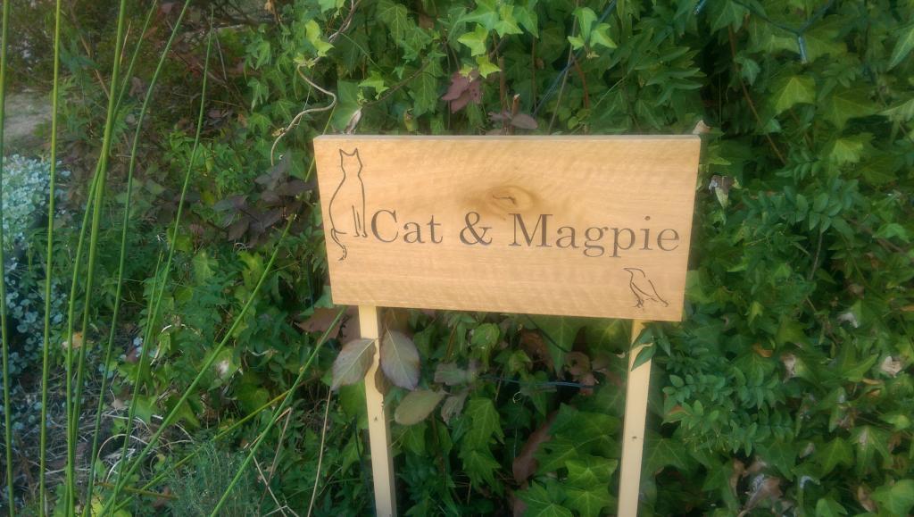 Cat & Magpie